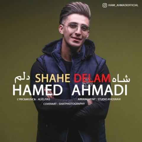 دانلود آهنگ شاه دلم از حامی احمدی
